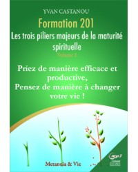 Pack Formation 201 - Les...
