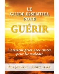 Le guide essentiel pour guérir