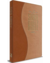 Bible souple, Duo brun et...